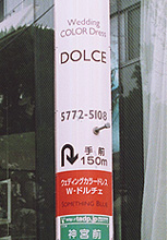 Wedding COLOR Dress DOLCE